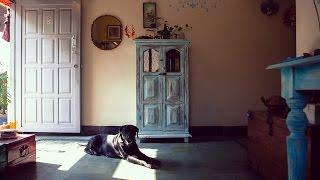 Almari : How To Paint & Distress Antique Furniture