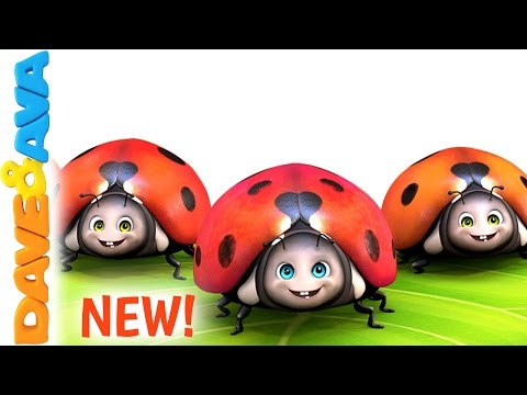 🌳 Five Little Ladybugs  New Nursery Rhyme from Dave and Ava 🌳