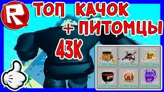 Роблокс Я ТОП КАЧОК + ПИТОМЦЫ в СИМУЛЯТОР КАЧКА = ROBLOX по русски, Weight Lifting Simulator 3