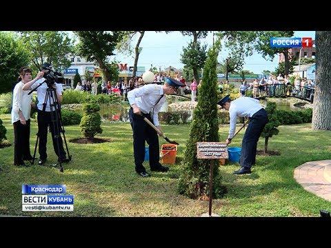 В Краснодарском президентском кадетском училище заложили Аллею выпускников