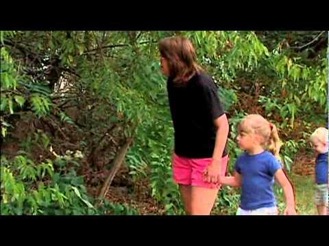 Poison Oak vs. Poison Ivy