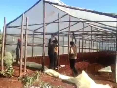 Wooden greenhouse kenya constructors 254723053026 youtube for Wooden greenhouse plans designs