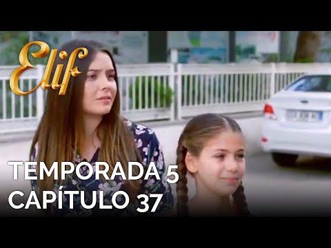 Elif Capítulo 956 | Temporada 5 Capítulo 37