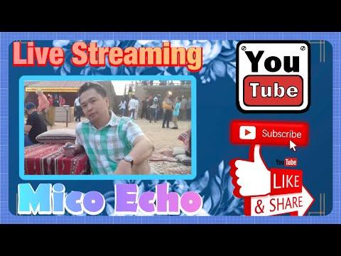 Echo Live Stream