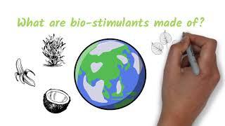 Core Nutrients - Ep. 2 - Bio stimulants 101