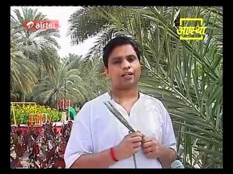Ayurvedic Benifits of Khajur | Acharya Balkrishna