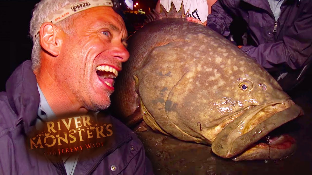 catching a giant grouper river monsters youtube