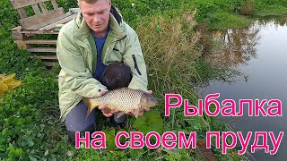 Рыбалка на своем пруду Пруд в деревне своими руками часть 16
