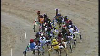 Vidéo de la course PMU PREMI HOOGE
