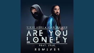 Are You Lonely  Yuan Remix