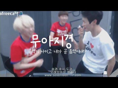 [세븐틴] 세븐틴 현웃의 순간들 (흔한 신인아이돌의 예능감)