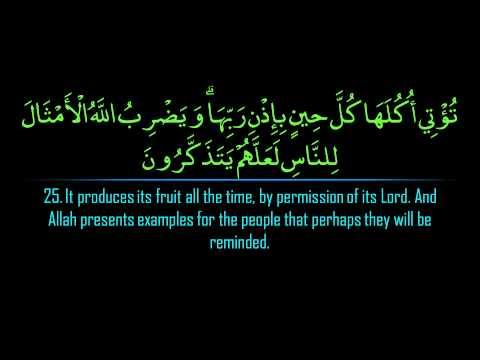 Surah Ibrahim | Maher al Mu'aqily  سورة ابراهيم | ماهر المعيقلي