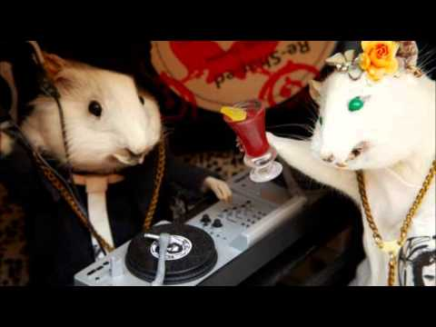 Shit Robot―Where's It At (Johnny Aux Remix)