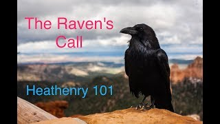 Video The Raven's Call - Ep. 04 - Heathenry 101 download MP3, 3GP, MP4, WEBM, AVI, FLV September 2018