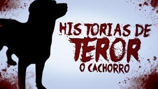 HISTORIAS DE TERROR #2: O CACHORRO