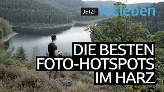 Wildes Niedersachsen: Fotoabenteuer im Harz