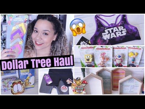 Dollar Tree Haul MAY 2019 NEW FINDS!