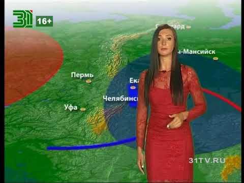 Прогноз погоды от Кристины Траут на 30,31 августа и 1 сентября