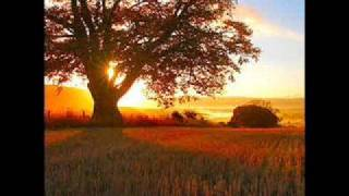 Mary Black - Fields Of Gold