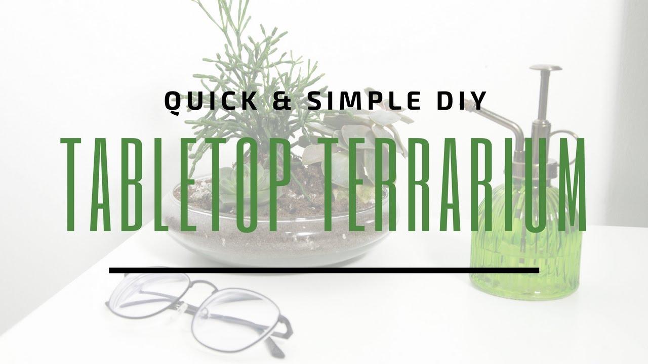 DIY TABLETOP TERRARIUM 🌿 | Easy Succulent Or Cacti Terrarium