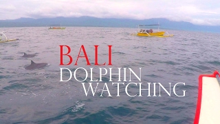 BALI DOLPHINS LOVINA - SEE THEM VERY CLOSE✔Worldtravel Vlog#70 Indonesia Adventure - Weltreise