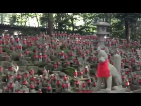 Toyokawa Inari  Fox (Temple, Japan)