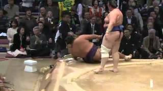平成25年十一月場所8日目 sumo 大相撲 九州場所.