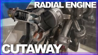 INSIDE LOOK: How a Radial Engine Works AMAZING Cutaway in Motion
