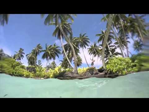 Palmyra atoll exploring
