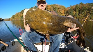 Catching BIG Catfish in TINY Boat - tips and tactics to catch more catfish