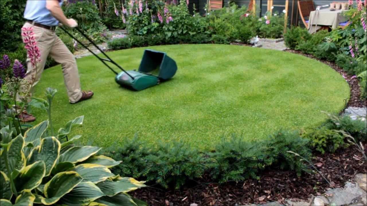 lawn care - mowing & edges