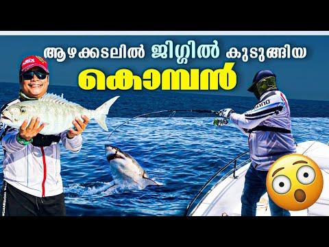 Fishing in Oman | Green Angler's Offshore Trip | Deep Sea Fishing.