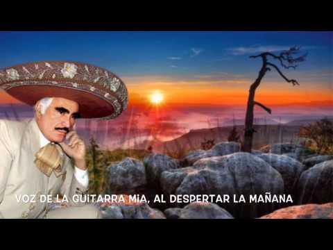 Vicente Fernández (México Lindo Y Querido)