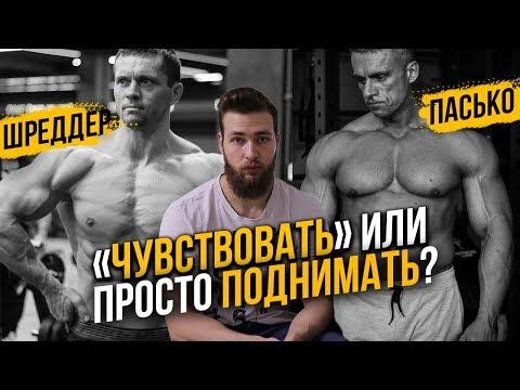 Нужно ли чувствовать мышцы? Шредер или Пасько / Правильный Бодибилдинг