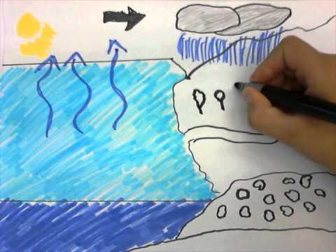 Veden kiertokulku - YouTube