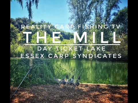 Reality Carp Fishing TV - The Mill Day Ticket Lake - Essex Carp Syndicates