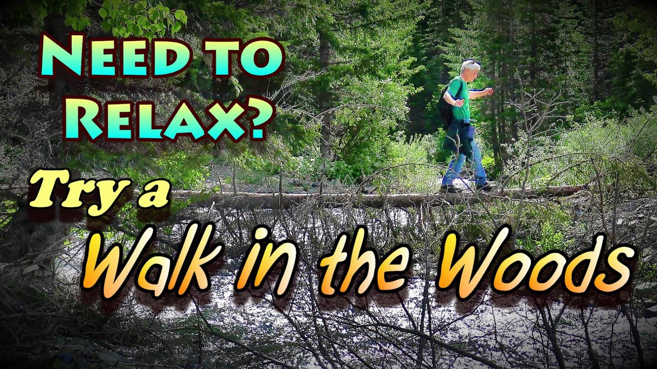 Need to Relax? Try A Walk in the Woods!