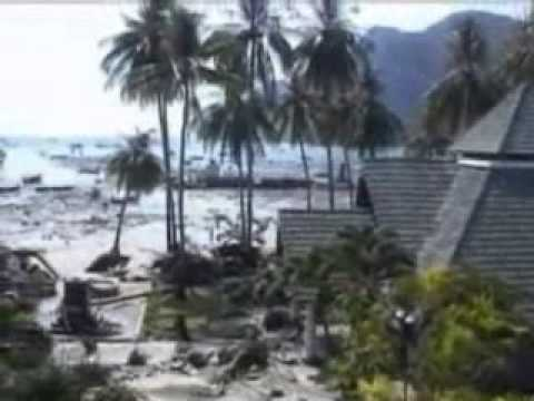 of asian tsunami Aftermath
