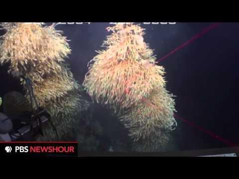 Exploring Antarctic Deep Sea Vents