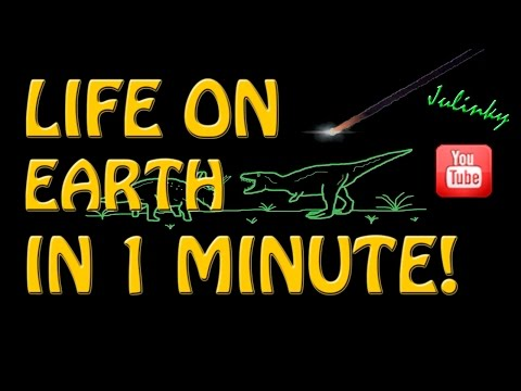 LIFE ON EARTH IN 1 MINUTE - Julinky
