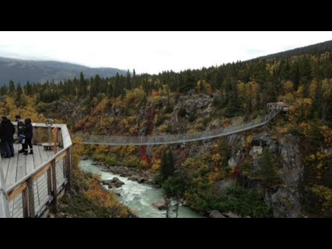 Skagway White Pass Summit with Yukon Suspension Bridge Tour - Skagway, Alaska
