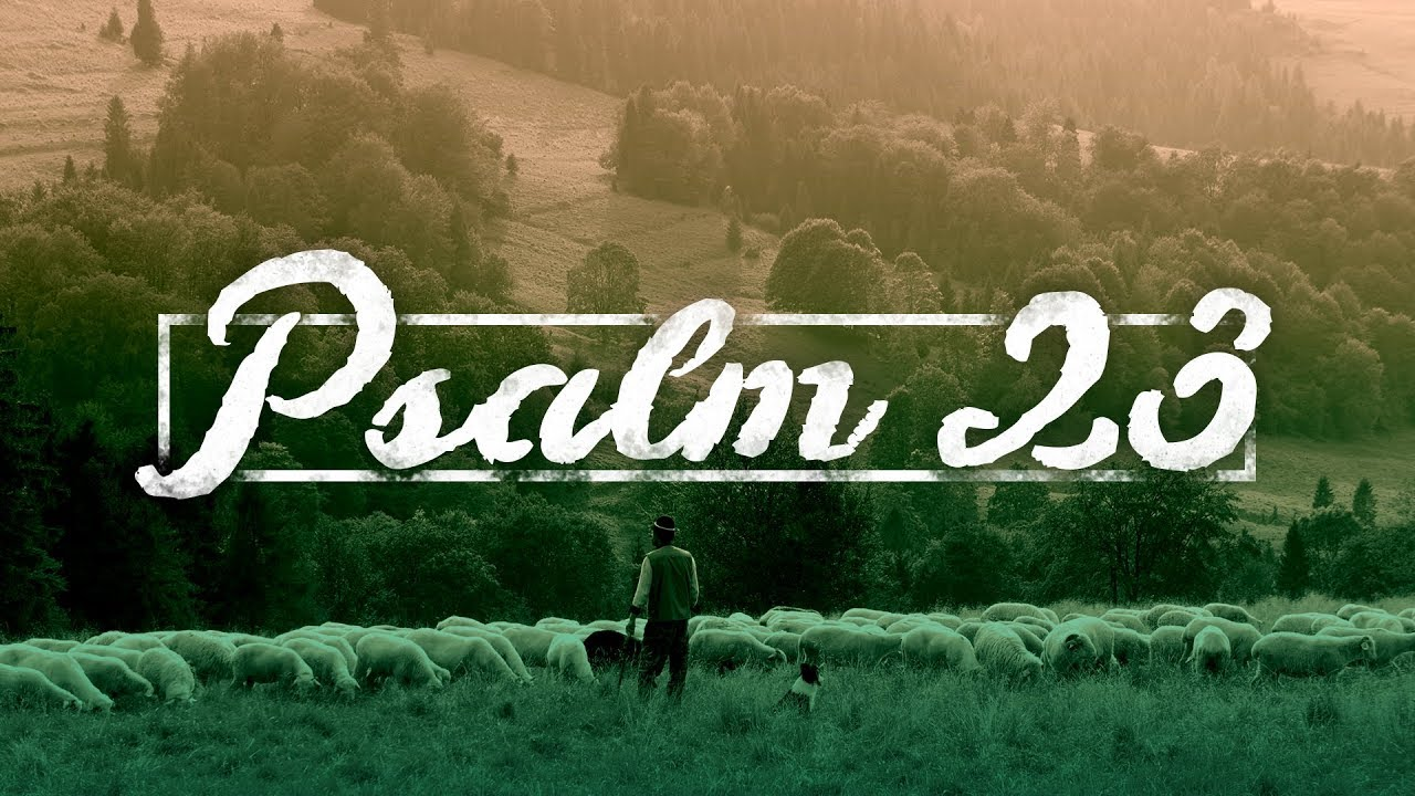 Psalm 23 | New Point Church