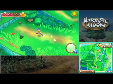 Let's Play Harvest Moon: A New Beginning 28: Milk and Honey