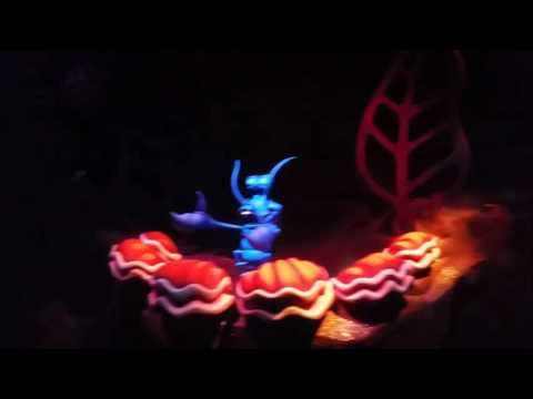 Disney`s Little Mermaid The Castle light show the jungle cruise buy hiker Bob