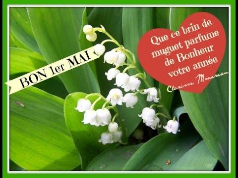 VLOG n°2  LE MUGUET FLEUR PORTE-BONHEUR 🍀 PAR CLARISSE ...