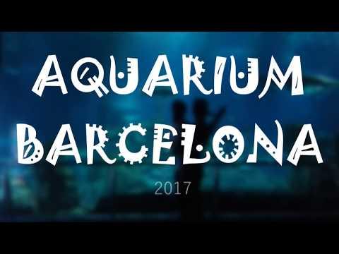 Aquarium Barcelona 2017