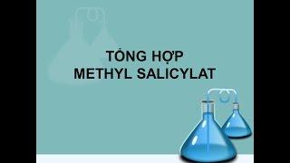 Tong hop methyl salicylat