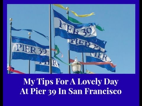 Pier 39 San Francisco - My Tips for a lovely day at Pier 39 in San Francisco.