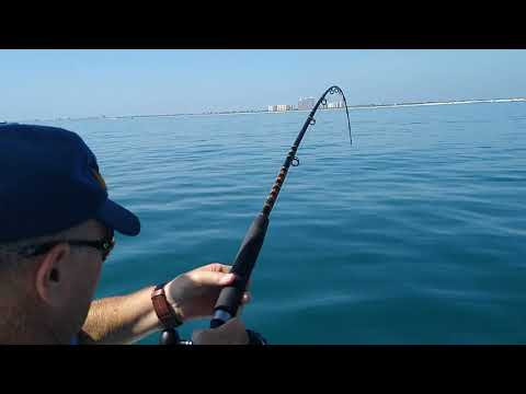 Shark Fishing Charters Daytona Beach