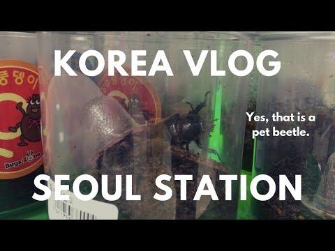 KOREA VLOG - Exploring Random Food Around Seoul Station & Lotte Mart
